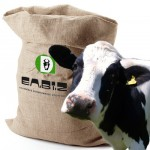 COMPOUND FEED FOR DAIRY COWS